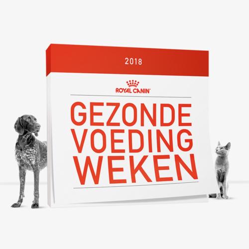 Gezonde Voeding Weken - Royal Canin -Hello Studio-Feature